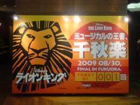 Lion4_2