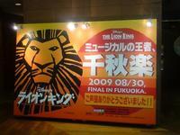 Lion5_2